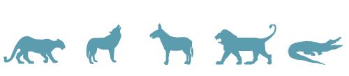Tiermotive, Vektoren