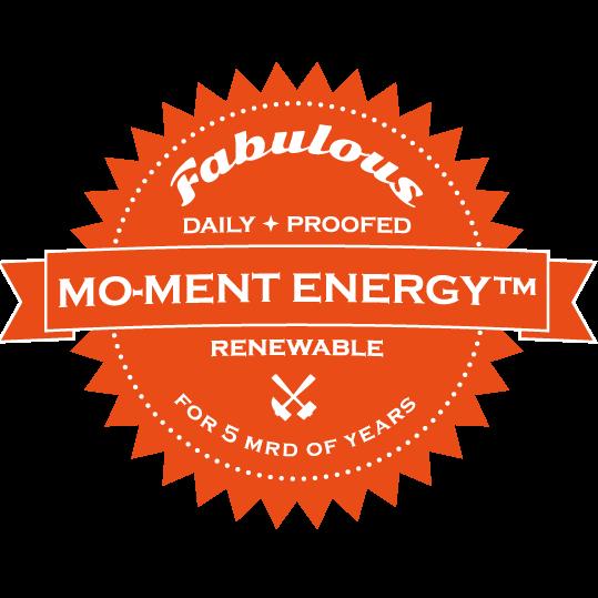 Logo: mo-ment energy